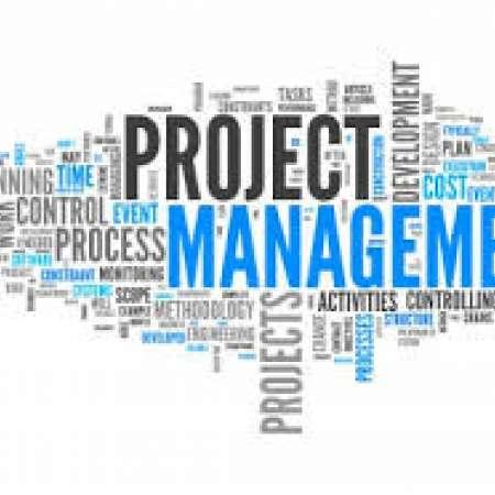 Mohamed Anas : Consultant Chef de Projets des systèmes d'informations