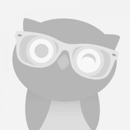 Freelance MongoDB